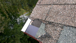 roofing repairs roof
